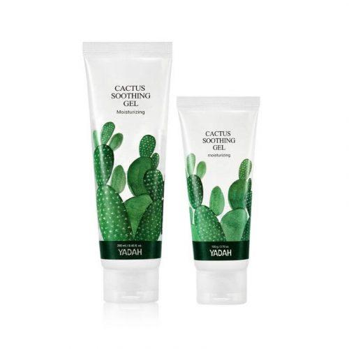 zel-lagodzacy-kaktus